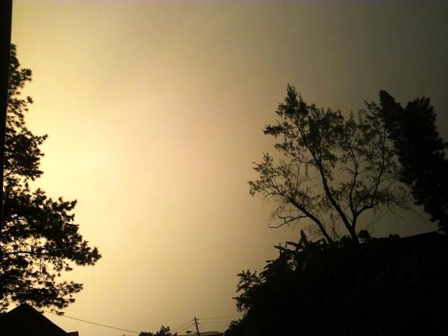 sky_29