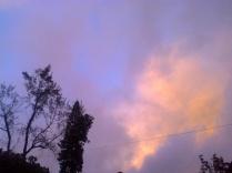 sky_31.1