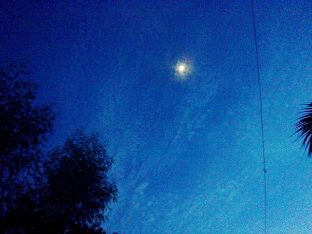 sky_68